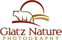 Glatz Nature Photography